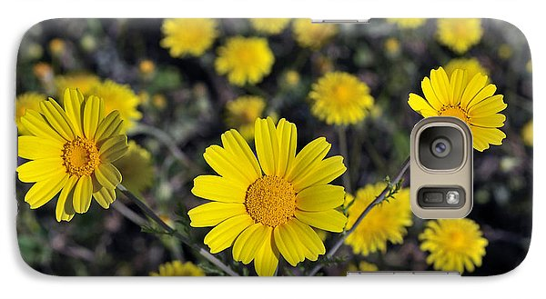 Galaxy Case featuring the photograph Crown Daisies by George Atsametakis