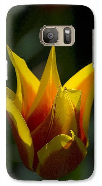 Galaxy Case featuring the photograph Crown Tulip by Yulia Kazansky