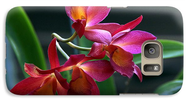 Galaxy Case featuring the photograph Ctna New River Orchid by Greg Allore