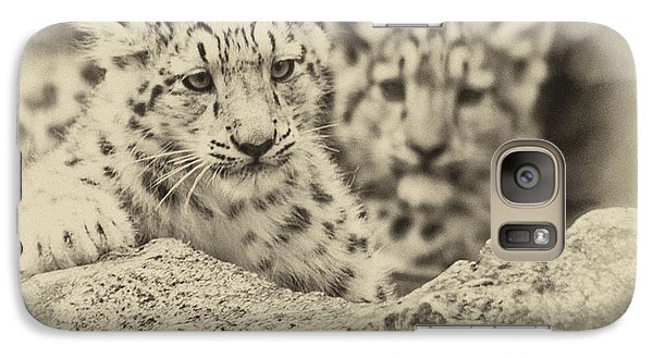 Galaxy Case featuring the photograph Cubs At Play by Chris Boulton
