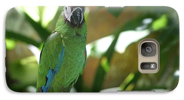 Galaxy Case featuring the photograph Curacao Parrot by Living Color Photography Lorraine Lynch