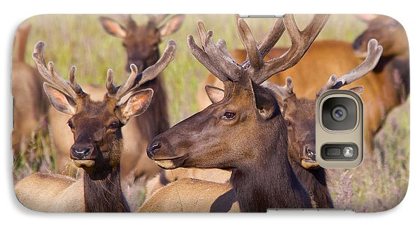 Galaxy Case featuring the photograph Curious Bull Elk by Todd Kreuter