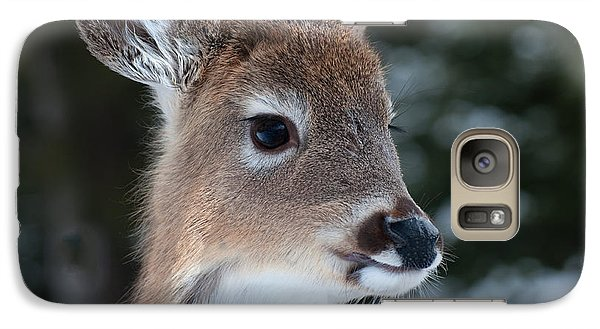Galaxy Case featuring the photograph Curious Fawn by Bianca Nadeau
