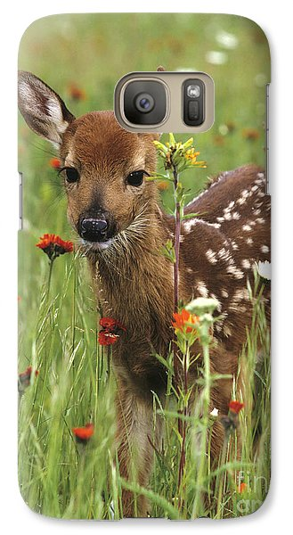 Curious Fawn Galaxy S7 Case