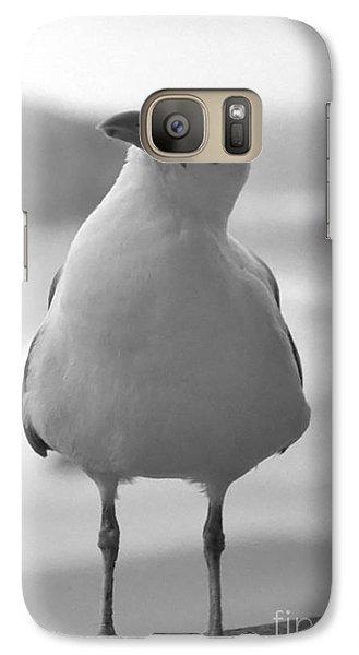 Galaxy Case featuring the photograph Curious Gull by Chris Scroggins