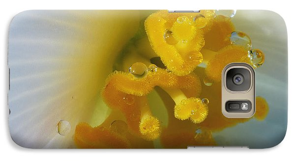 Galaxy Case featuring the photograph Curly by Wendy Wilton