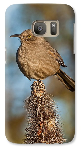 Galaxy Case featuring the photograph Curve-billed Thrasher On A Cactus by Jeff Goulden