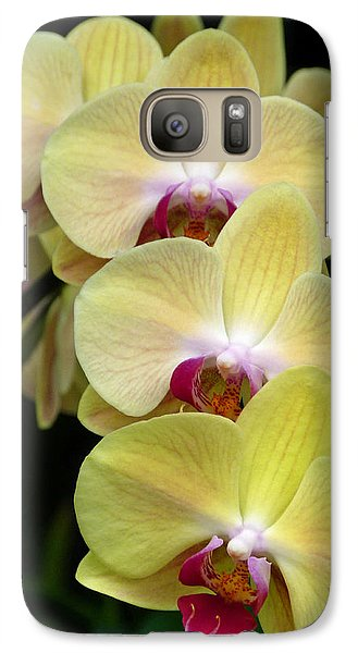 Galaxy Case featuring the photograph Curvy Ladies by Cindy McDaniel