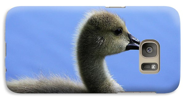 Galaxy Case featuring the photograph Cygnet by Alyce Taylor