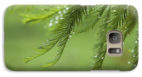 Galaxy Case featuring the photograph Cypress In The Mist - Art Print by Jane Eleanor Nicholas