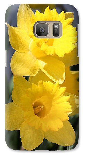 Galaxy Case featuring the photograph Daffodil Delight by Anita Oakley