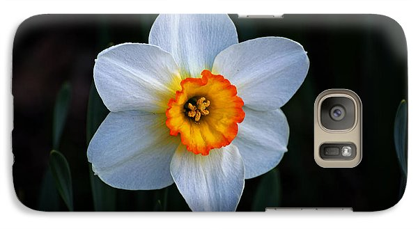 Galaxy Case featuring the photograph Daffodil In Riverside Park by Bill Swartwout