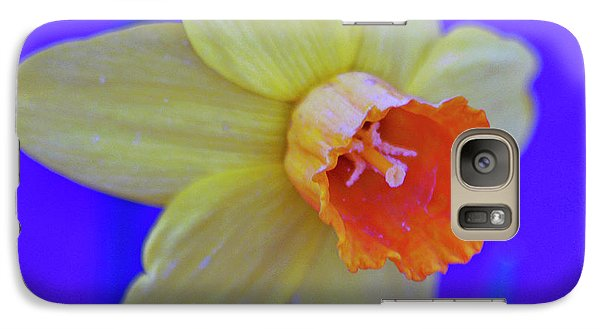 Galaxy Case featuring the photograph Daffodil On Blue by Juls Adams