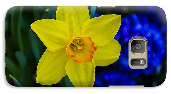Galaxy Case featuring the photograph Daffodil by Phil Abrams