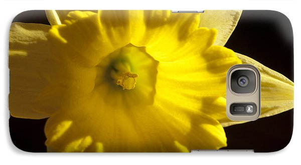 Galaxy Case featuring the photograph Daffodile by Haleh Mahbod