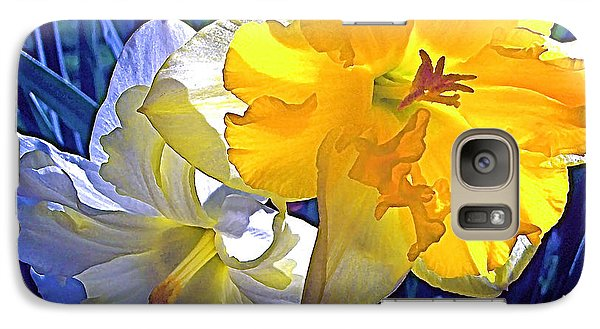 Galaxy Case featuring the photograph Daffodils 1 by Pamela Cooper