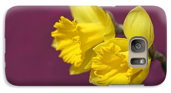 Galaxy Case featuring the photograph Daffodils by Barbara West