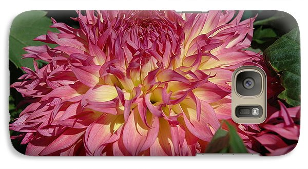 Galaxy Case featuring the photograph Dahlia by Christiane Hellner-OBrien