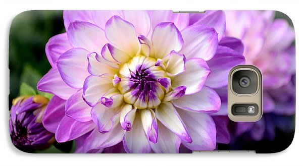 Galaxy Case featuring the photograph Dahlia Flower With Purple Tips by Scott Lyons