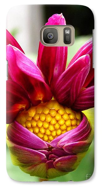 Galaxy Case featuring the photograph Dahlia From The Showpiece Mix by J McCombie