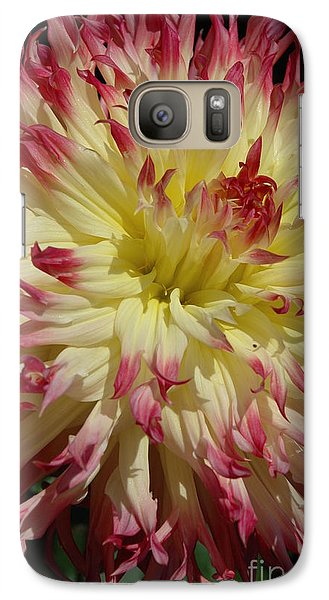 Galaxy Case featuring the photograph Dahlia II by Christiane Hellner-OBrien