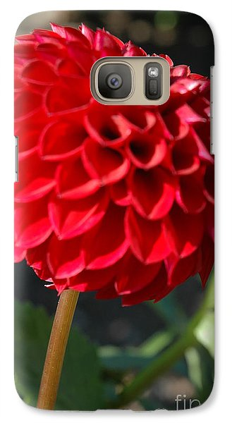 Galaxy Case featuring the photograph Dahlia IIi by Christiane Hellner-OBrien