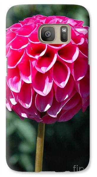 Galaxy Case featuring the photograph Dahlia IIII by Christiane Hellner-OBrien