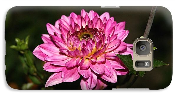 Galaxy Case featuring the photograph Dahlia Lucca Johanna by Margaret Newcomb