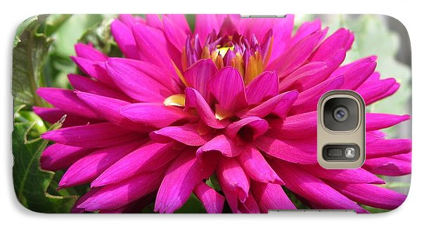 Galaxy Case featuring the photograph Dahlia Named Andreas Dahl by J McCombie