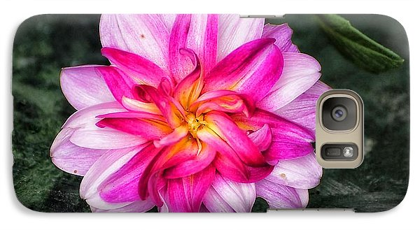 Galaxy Case featuring the photograph Dahlia Portrait by Beth Akerman