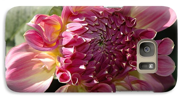 Galaxy Case featuring the photograph Dahlia V by Christiane Hellner-OBrien