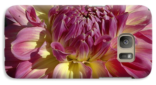 Galaxy Case featuring the photograph Dahlia Vii by Christiane Hellner-OBrien