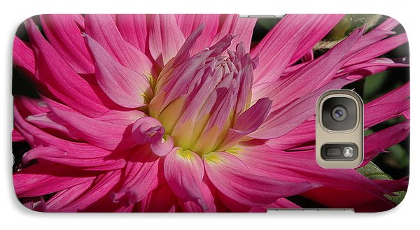 Galaxy Case featuring the photograph Dahlia X by Christiane Hellner-OBrien