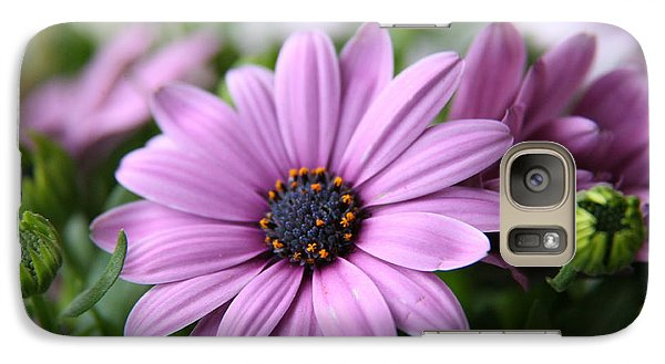 Galaxy Case featuring the photograph Daisies by Lynn England