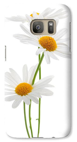 Daisies On White Background Galaxy Case by Elena Elisseeva