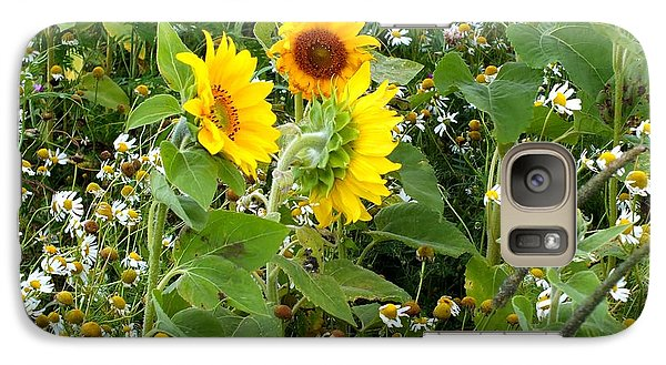 Galaxy Case featuring the photograph Daisy And Sunflower Mix by Gene Cyr
