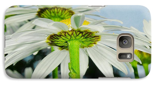 Galaxy Case featuring the photograph Daisy Art 1 The Umbrella by MaryJane Armstrong