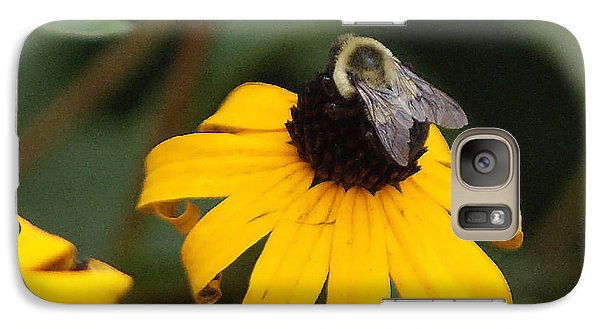 Galaxy Case featuring the photograph Daisy Bumble Bee by B Wayne Mullins