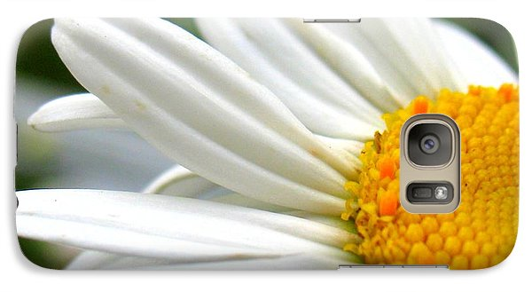 Galaxy Case featuring the photograph Daisy by Patti Whitten