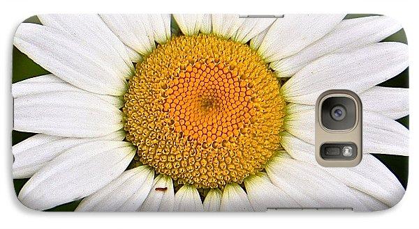 Galaxy Case featuring the photograph Daisy by Susan Crossman Buscho