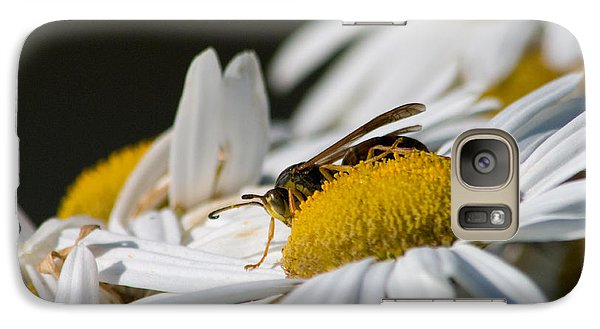 Galaxy Case featuring the photograph Daisy With Friend by Greg Graham