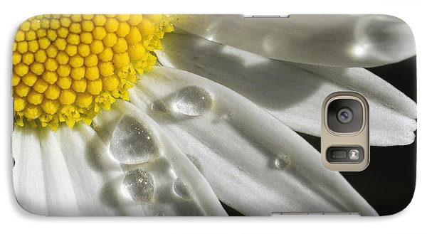 Galaxy Case featuring the photograph Daisy With Raindrops by Rob Graham