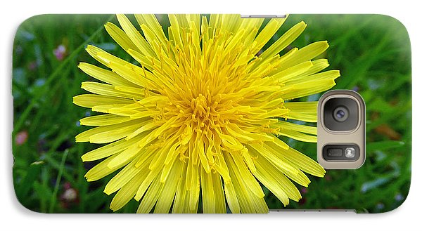 Galaxy Case featuring the photograph Dandelion And Spider by Laurie Tsemak