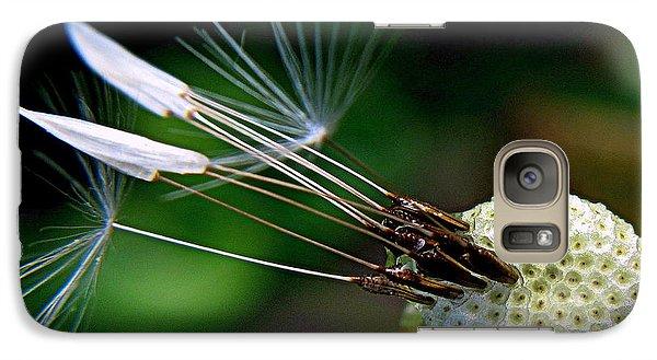 Galaxy Case featuring the photograph Dandelion Arrows by Suzy Piatt