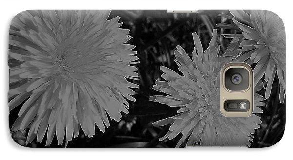 Galaxy Case featuring the photograph Dandelion Weeds? B/w by Martin Howard