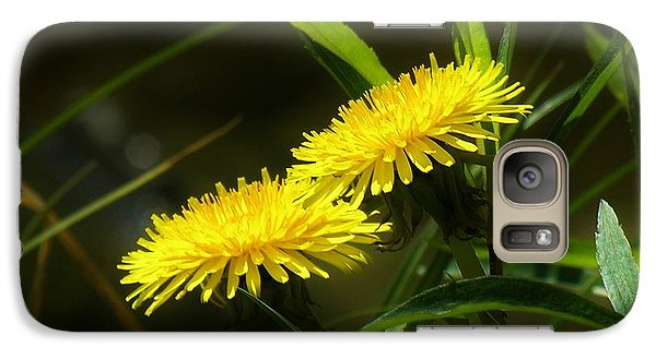 Galaxy Case featuring the photograph Dandelions by Sherman Perry