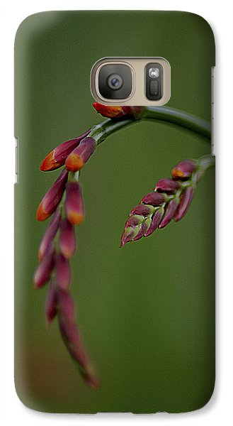 Galaxy Case featuring the photograph Dangling by Jacqui Boonstra