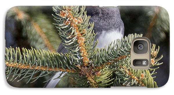 Dark-eyed Junco  Galaxy S7 Case by Ricky L Jones