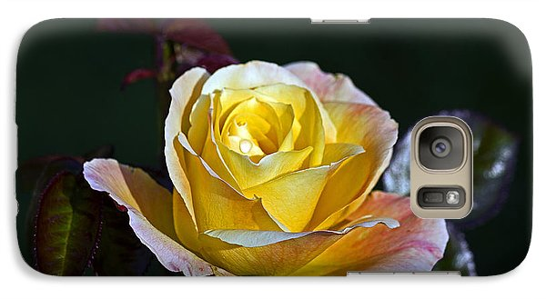 Galaxy Case featuring the photograph Day Breaker Rose by Kate Brown
