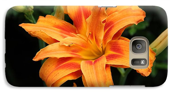 Galaxy Case featuring the photograph Day Lily by Janet Greer Sammons